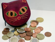 Curs valutar: Leul prinde puteri in fata euro. Celelalte valute isi continua cresterea