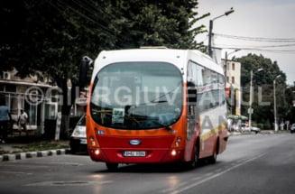 Curse mai dese spre Balci! Programul complet al autobuzelor AICI