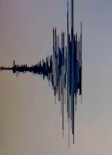 Cutremur 7,7 grade in largul Chile: Populatia a fost evacuata de teama valurilor uriase - UPDATE