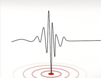 Cutremur de suprafata simtit puternic in Italia