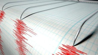 """Cutremur devastator in Noua Zeelanda: 8.1 pe scara Richter! Alerta de tsunami: """"Nu stati in case!"""" E haos! 5 martie 2021, ziua pe care nu o vor uita prea curand locuitorii tarii"""