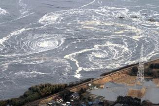 Cutremur in Japonia: Continua cautarea celor disparuti