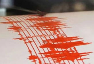 Cutremur vineri dimineata, in apropiere de Pitesti