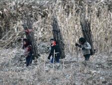 Cutremurator in Coreea de Nord: Populatia tarii moare de foame