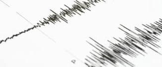 Cutremure langa Fukushima