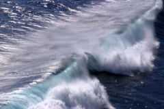 Cutremurul din Chile inca isi face simtite efectele: Un tsunami a lovit Japonia (Video)