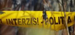 DAMBOVITA: Ancheta Politie-ITM in padurile de la Valea Lunga!