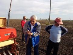 Daea sustine ca din 16 octombrie va incepe plata subventiilor pentru agricultori