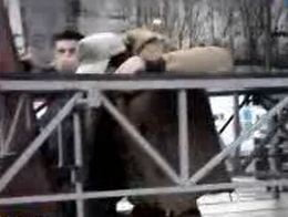 Dan Balan a rupt scena, la Brasov