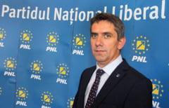 Danca: Cand va fi posibila o majoritate, PNL va readuce Legile Justitiei si Codurile in cadrul firesc