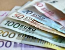 Daniel Daianu (BNR): Pana la Euro avem de aparat Leul