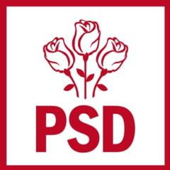 Daniel Suciu confirma ca va candida pentru functia de presedinte executiv al PSD: Catalin Radulescu iese la atac, Mircea Pascu ii da replica