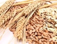 De ce este bine sa consumam cereale integrale - sfatul nutritionistului