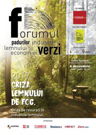 De ce nu reuseste Romania sa puna in valoare resursele forestiere la adevaratul potential?