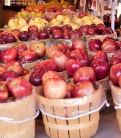 De ce sunt sanatoase merele