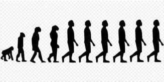 De fapt, de ce au disparut oamenii de Neanderthal? O noua cercetare vine cu un raspuns surprinzator
