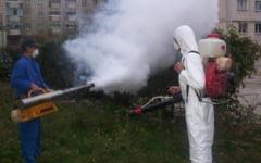 De joi incep tratamentele chimice contra tantarilor. Ce masuri de protectie sunt recomandate populatiei