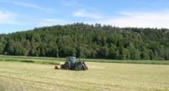 De la 1 februarie scutiri de impozit la vanzarea terenurilor agricole! Vezi care sunt conditiile