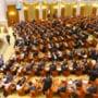 Decizie in Comisia juridica pe tema animalelor de la circ. Proiectul, trimis la Camera Deputatilor
