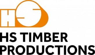Declaratia HS Timber Group referitor la implicarea in politica