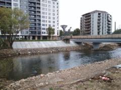 Defrisari si cimentari la Podul Portelanului?