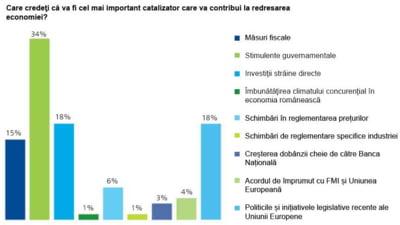 Deloitte: Companiile asteapta mai mult sprijin din partea Guvernului