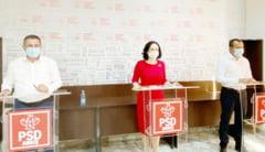 Deputata Simona Bucura-Oprescu a initiat un proiect de lege pentru sprijinirea industriei auto si productia locala de electrocasnice