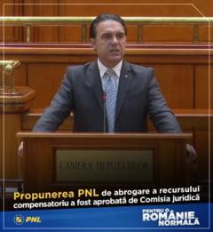 Deputatul PNL care a votat recursul compensatoriu: Romanii s-ar putea intreba daca a fost o neghiobie sau o adevarata potlogarie