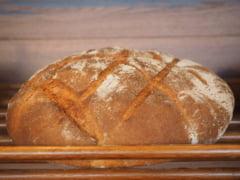 Descoperire exceptionala: Cea mai veche bucata de paine dateaza dinainte sa existe agricultura