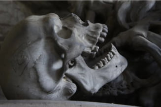 Descoperire macabra facuta sub o biserica din Belgia