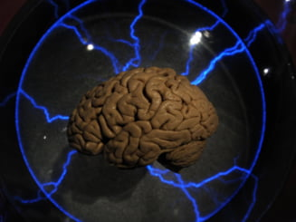 Descoperire stiintifica - ce beneficii aduce somnul