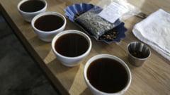 Descoperire uluitoare despre cafea: Ce nu stiai despre cofeina