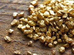 Descoperire valoroasa: Mine de aur din vremea Imperiului Roman