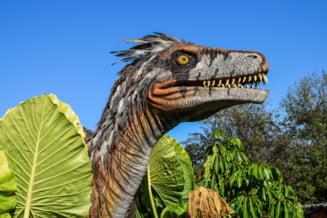 Descoperiri de noi fosile sugereaza ca dinozaurii calatoreau peste oceane