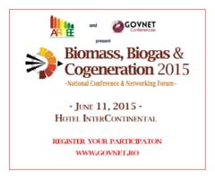 Despre afaceri cu energie produsa din biomasa, biogaz sau in centrale de cogenerare