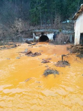 Dezastru ecologic in Maramures, desi autoritatile sustineau ca totul e in regula. Situatia se poate repeta oricand