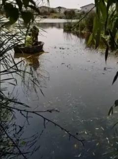 Dezastru ecologic langa Bucuresti (Video)