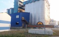 Dezastru economic la fabrica de ulei din Tandarei. Liniile de productie sunt inchise de un an, iar angajatii sunt concediati