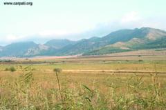 Dezbateri pentru rezervatia naturala Dealurile Bestepe