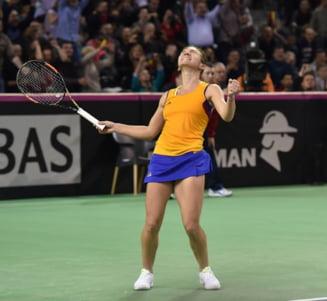 Dezvaluiri dureroase dupa meciul de Fed Cup: Simona Halep a plans toata seara, nu putea nici sa mearga