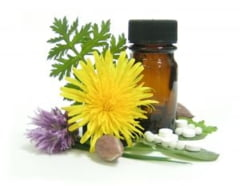 Dieta recomandata in timpul tratamentului homeopat