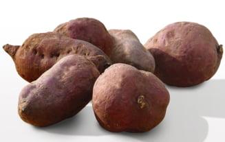 Dilema cartofului dulce: Oamenii de stiinta sunt intrigati. Cine a ajuns primul in Polinezia?