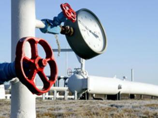 Din 2010 putem importa gaze si de la unguri