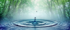 Din ce este fabricat un filtru de apa si cum functioneaza