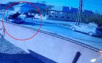 Doi cai în galop s-au izbit violent într-o mașină care rula pe drumul național. Animalele au ieșit în viteză de pe o stradă laterală VIDEO