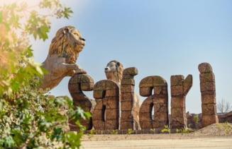 Doi lei au fost testati pozitiv cu coronavirus la un parc safari din India