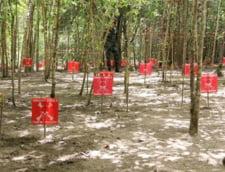 Donald Trump ridica restrictiile privind utilizarea minelor antipersonal, impuse de Barack Obama