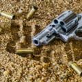 Doua femei din judetul Vrancea au fost arestate in timp ce incercau sa vanda unui buzoian mai multe arme