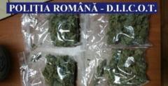 Doua persoane, sot si sotie, retinute de procurorii DIICOT Iasi pentru trafic de droguri
