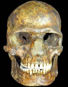 Dovada ca primii europeni au supravietuit unei ere glaciare